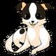 Chihuahuadog alt4