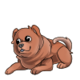Baby3Chow Chow