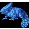 Chameleon4 alt2