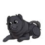 Baby1Chow Chow