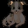 Chihuahuadog2 alt4