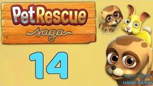 Pet Rescue Saga Level 14 - 3 Stars Walkthrough, No Boosters