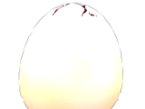 List of Eggs