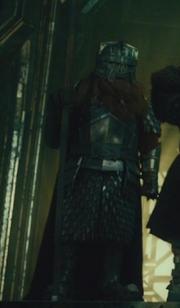 Dwarf Guard 9