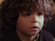 Unknown Extra 27 as Cute Young Hobbit