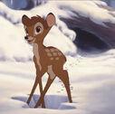 Bambi2 5.jpg 768×432 pixels 2013-09-29 17-28-38