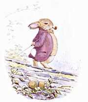 Tpc-m-the-tale-of-benjamin-bunny-beatrix-potte-img23