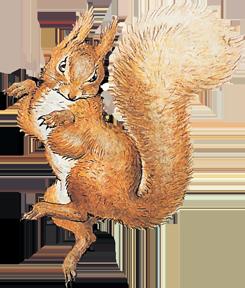 Squirrel Nutkin article detail