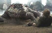 Neverland croc