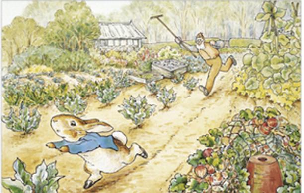 mr mcgregor s garden rabbit friends wiki fandom powered