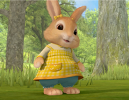 Cotton Tail Rabbit Character