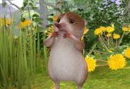 Peter-Rabbit-Shrew-Character-Image0x042781