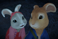 Peter Rabbit And Lily Bobtail Image