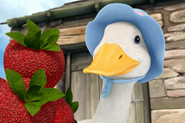 Happy-Mrs-Puddle-Duck-With-Strawberries