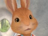 Flopsy Rabbit