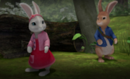 Peter-Rabbit-And-Cotton-Tail-In-Forest-Image