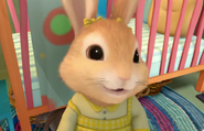 Cotton-tail-Peter-Rabbit-Little-Sister-Nick-jr