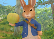 Peter Rabbit Show Nick Jr Character Peter Rabbit