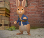 Peter Rabbit From Peter Rabbit