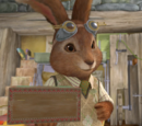 Mr. Bouncer
