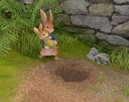 Peter-Rabbit-Holding-Cotton-Tail-Image