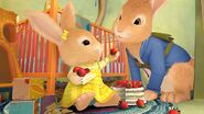 Cotton tail and peter