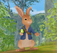 Peter Rabbit Happy