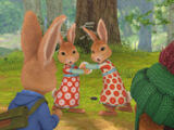 Mopsy Rabbit's Gallery