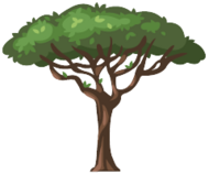 Stone Pine Tree