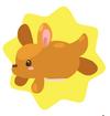Kangaroofish