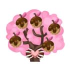 Cookie berry tree