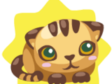 Brown Cat Plushie