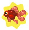 Red Demekin Goldfish
