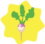 Tiny-HG-Turnip