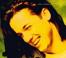 David Lichens 1995 b