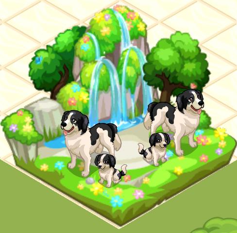 File:Pet shop story-2014-06-14-07-01-14-1.png