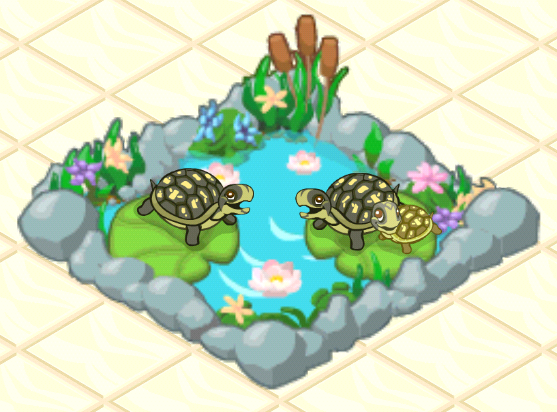 File:Box Turtle.png