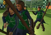 Slytherin Quidditch victory