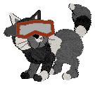 Redskigoggles