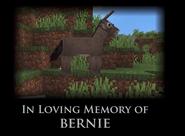 Bernie death