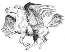 1024px-Pegasus (PSF)-1-