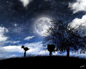 Starry Night1