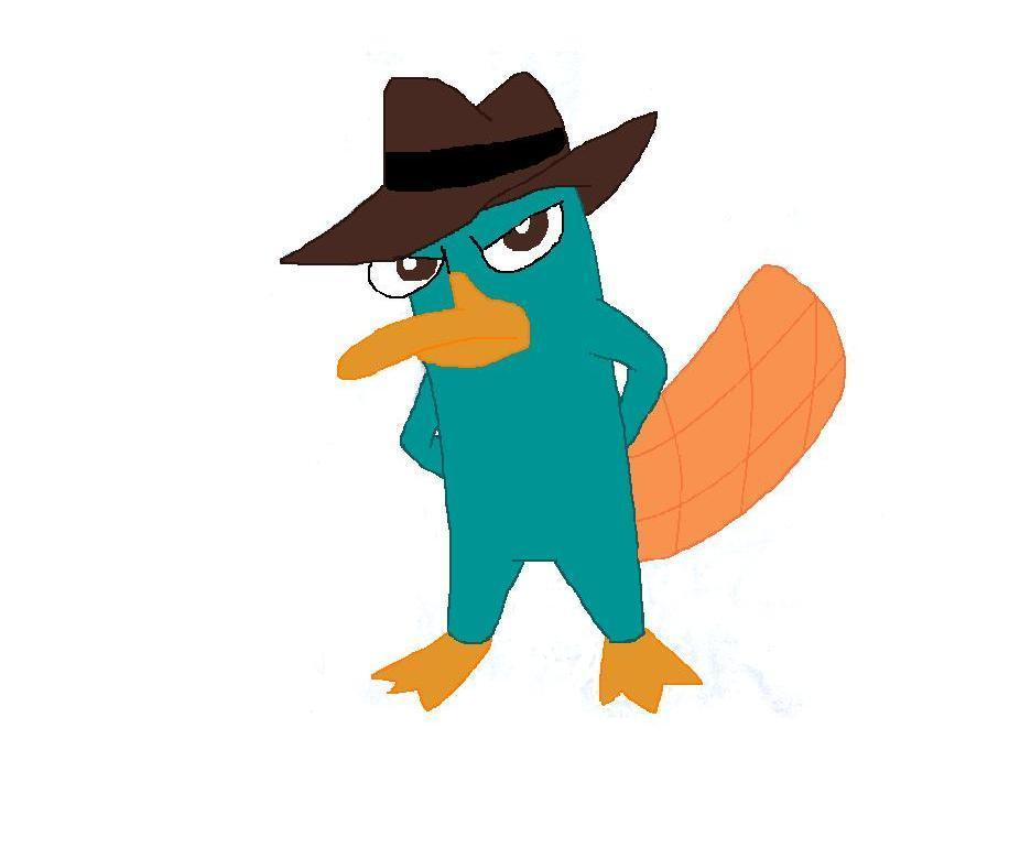 image my drawing of perry perry the platypus 6951529 926 770 jpg