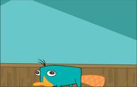 A Platypus Dream image 2
