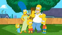 The Simpsons in Danville