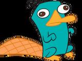 Meet Larry the Platypus!
