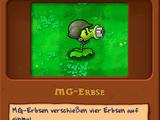 MG-Erbse