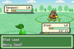 Worry Seed