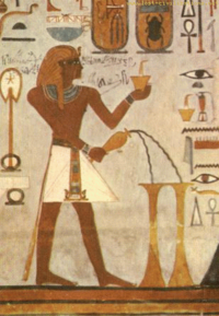Egyptplant