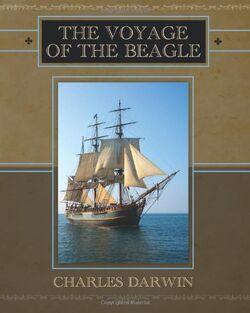 VoyageBeagle